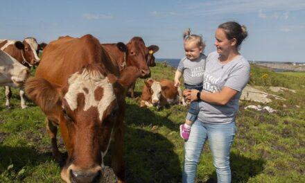 Lisa (24) er Karmøys yngste heltidsbonde – Karmøynytt