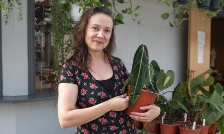 Olga (40) har over tusen planter hjemme. Nå åpner hun sin første plantebutikk – Karmøynytt