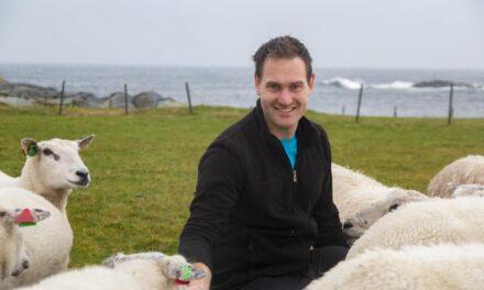 Etter at Ingvald (28) begynte å selge pinnekjøtt fra egen gård på Facebook, har det tatt helt av – Karmøynytt